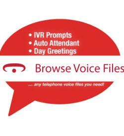 Voice Files